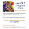 Přednáška_HANDLE_29.7.2020_pozvánka